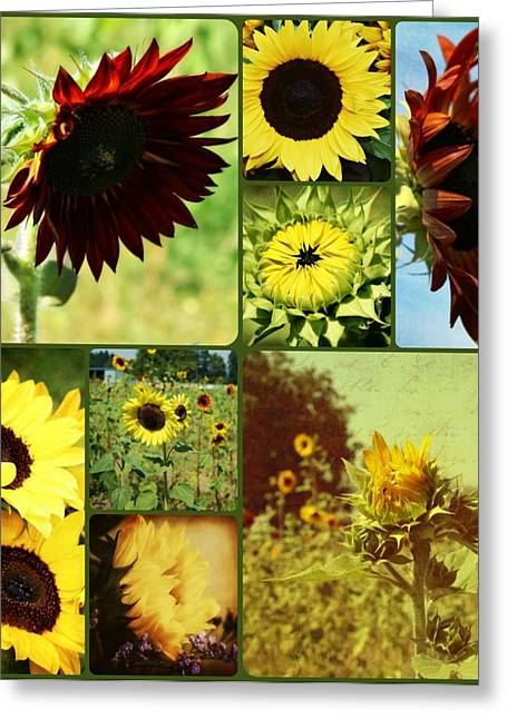 Portland Photography Greeting Cards - All the Sunflowers Greeting Card by Cathie Tyler