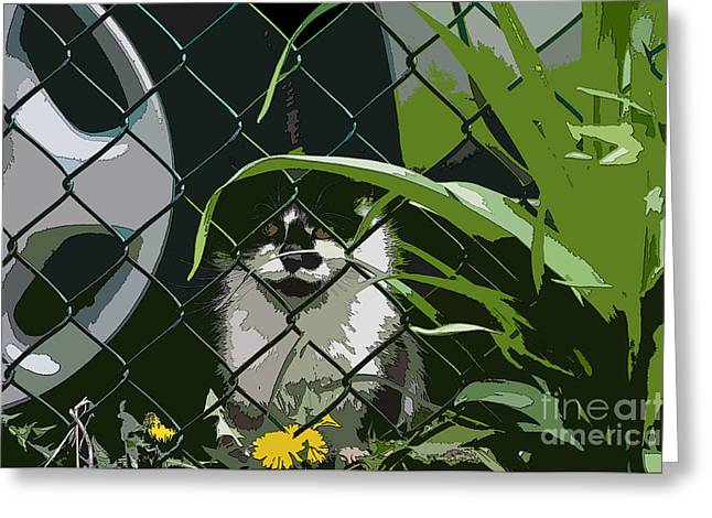 Cat Images Greeting Cards - Alley Cat Greeting Card by Reb Frost