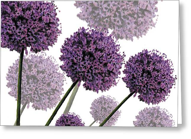 Alliums Greeting Cards - Allium Fernandez Greeting Card by Sarah Hough