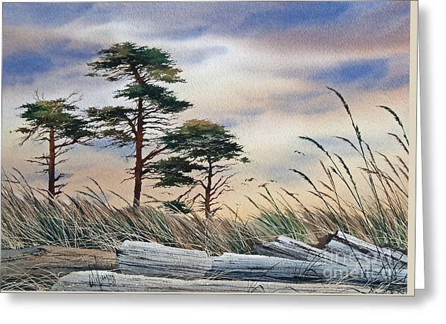 Landscape Framed Prints Greeting Cards - Allure of the Coast Greeting Card by James Williamson