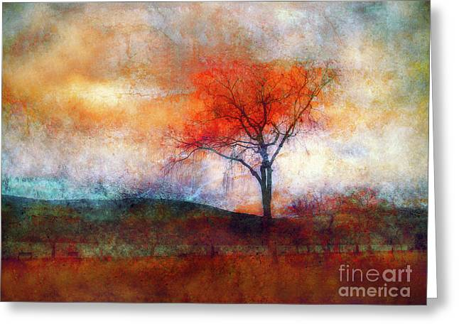 Alone In Colour Greeting Card by Tara Turner