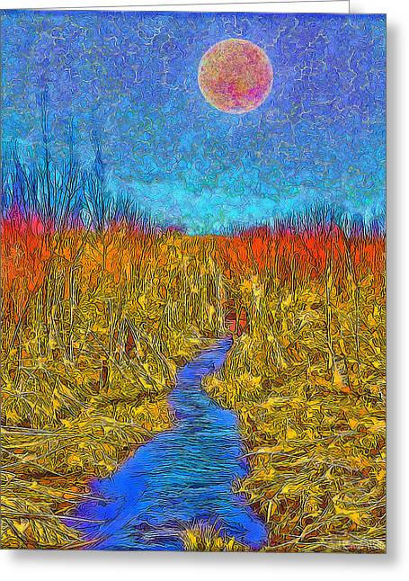 Stream Digital Greeting Cards - River In The Wilderness - Boulder County Colorado Greeting Card by Joel Bruce Wallach