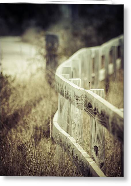 Pastureland Greeting Cards - Along The Fence Greeting Card by Debra Forand