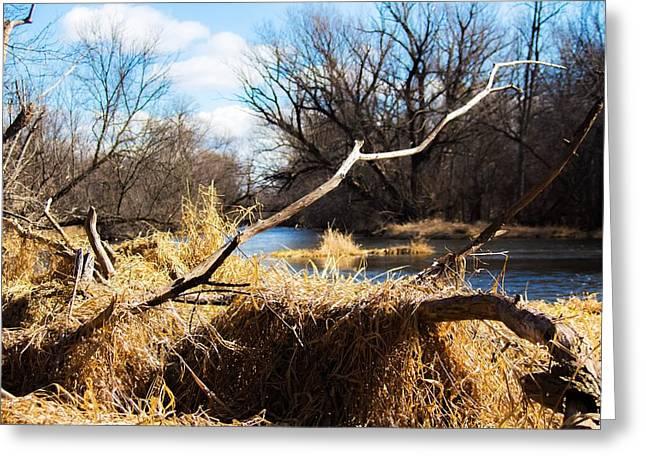 Along The Fox River Greeting Card by Jeanette Fellows