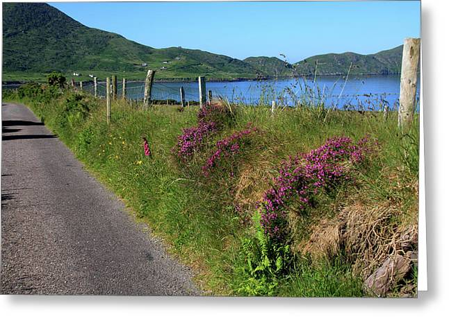 Along The Kerry Way Greeting Card by Aidan Moran