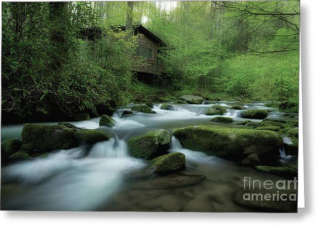 Smoky Greeting Cards - Along The Morning Stream Greeting Card by Michael Eingle