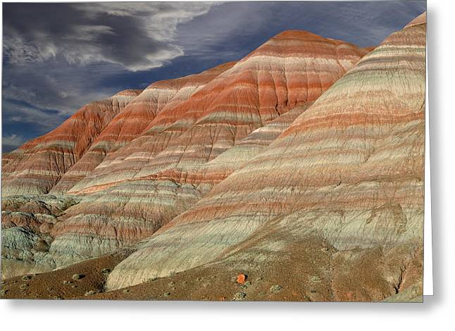 Southern Utah Greeting Cards - Along the Paria Greeting Card by Kathleen Bishop