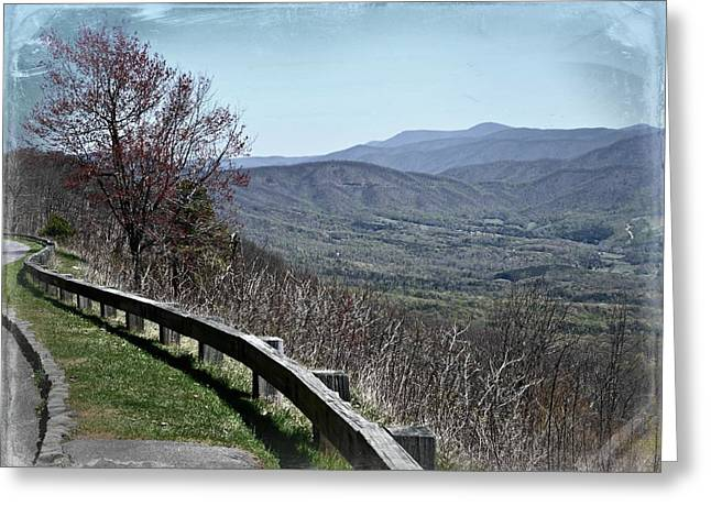 Along The Parkway Greeting Card by Jim Cook