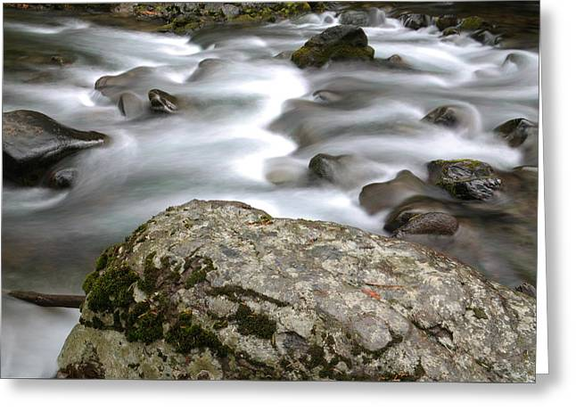Along The River Greeting Card by Jeff Swan