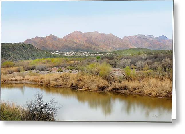 Cave Creek Western Greeting Cards - Along the Verde River Greeting Card by Gordon Beck
