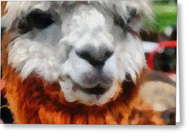 Alpacas Greeting Cards - Alpaca Greeting Card by Michelle Calkins