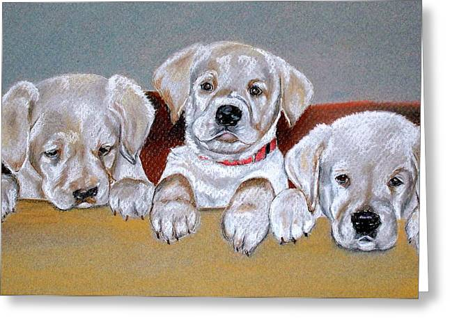 Puppies Pastels Greeting Cards - Alpha Greeting Card by Crystal  Harris-Donnelly