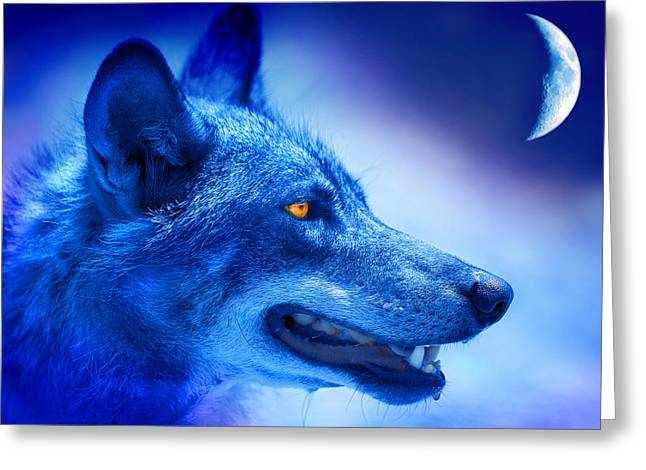 Wolf Moon Greeting Cards - Alpha Wolf Greeting Card by Mal Bray