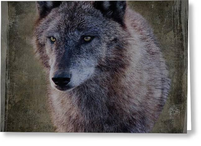 Alpha Wolf Portrait Greeting Card by Teresa Wilson