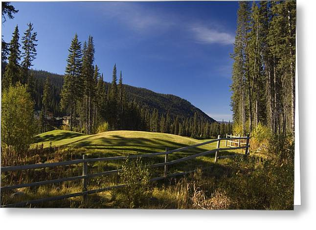 Sun Peaks Greeting Cards - Alpine Golf Greeting Card by Peter Olsen