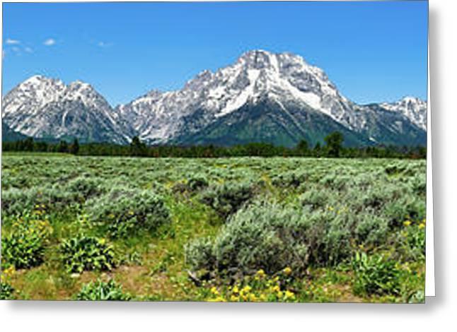 Grand Teton Greeting Cards - Alpine Meadow Teton Panorama Greeting Card by Greg Norrell