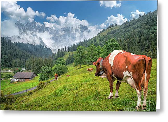 Alpine Travel Stories Greeting Card by JR Photography
