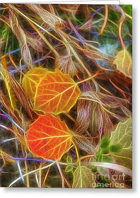 Fall Colors Greeting Cards - Already Fallen Greeting Card by Veikko Suikkanen