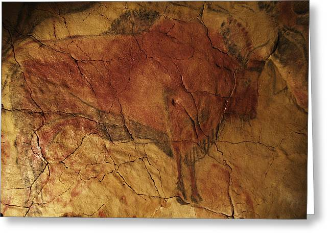 Palaeolithic Greeting Cards - Altamira Cave Painting Of A Bison Greeting Card by Javier Truebamsf