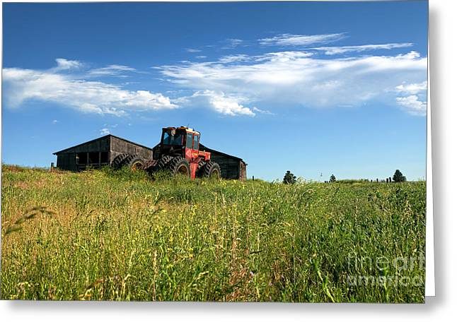 Red Tractors Greeting Cards - Always Tomorrow Greeting Card by Reflective Moment Photography And Digital Art Images