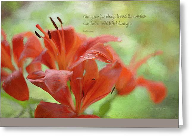 Day Lilly Greeting Cards - Always Toward The Sunshine  Greeting Card by Maria Angelica Maira