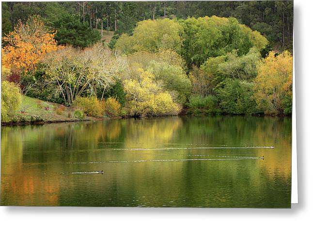 Amber Days Of Autumn Greeting Card by Marion Cullen