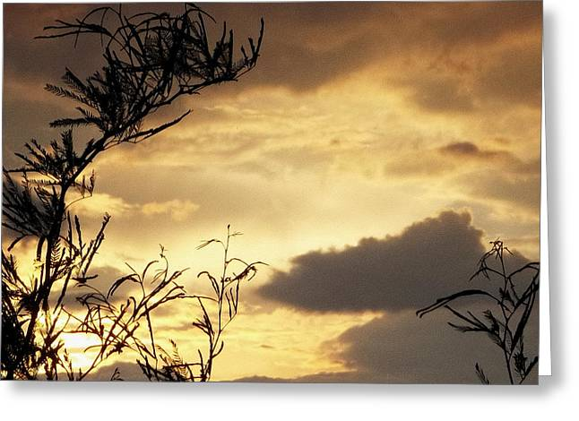 Amber Sky Greeting Card by Glenn McCarthy Art and Photography