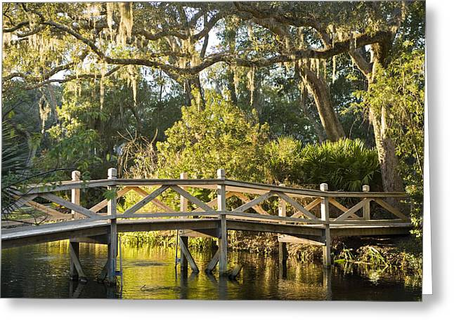 Best Sellers -  - Urban Images Greeting Cards - Amelia Island Plantation, Bridge Greeting Card by Richard Nowitz