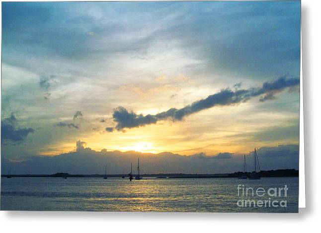 Sea Animals Greeting Cards - Amelia Island Sunset Greeting Card by Sharon Nelson-Bianco