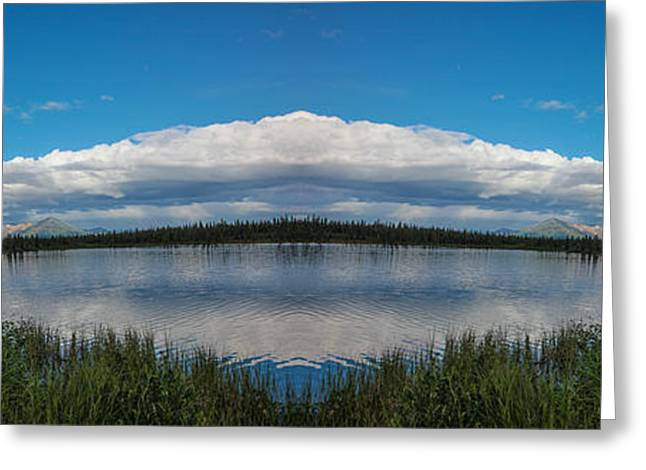 Reflections Of Trees In River Greeting Cards - America The Beautiful - Alaska Greeting Card by Madeline Ellis