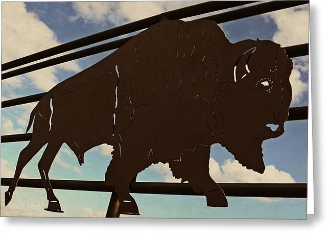American Bison Silhouette Greeting Card by Chris Berry