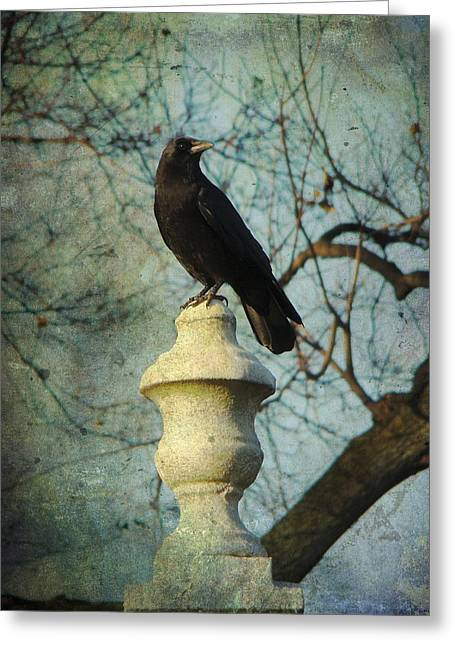 American Crow Greeting Card by Gothicolors Donna