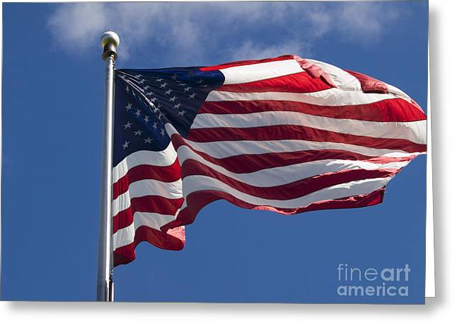 American Flag Greeting Card by Tara Lynn