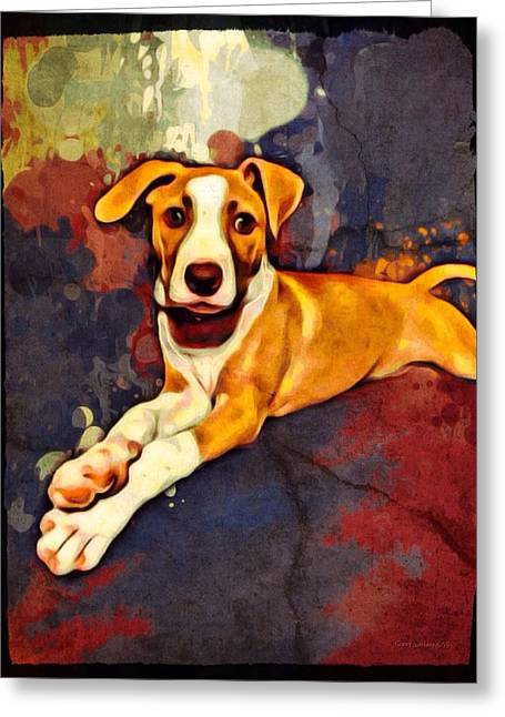 Dogs Digital Art Greeting Cards - American Foxhound Portrait Greeting Card by Scott Wallace