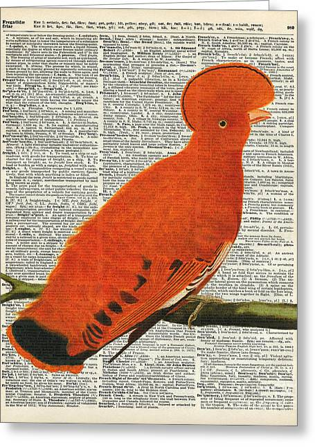 American Martinet Orange Parrot Bird Greeting Card by Jacob Kuch
