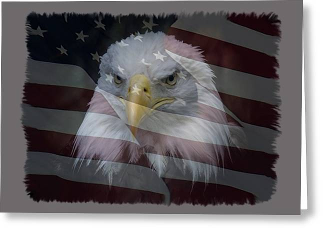 Eagle And Flag Greeting Cards - American Pride 2 Greeting Card by Ernie Echols