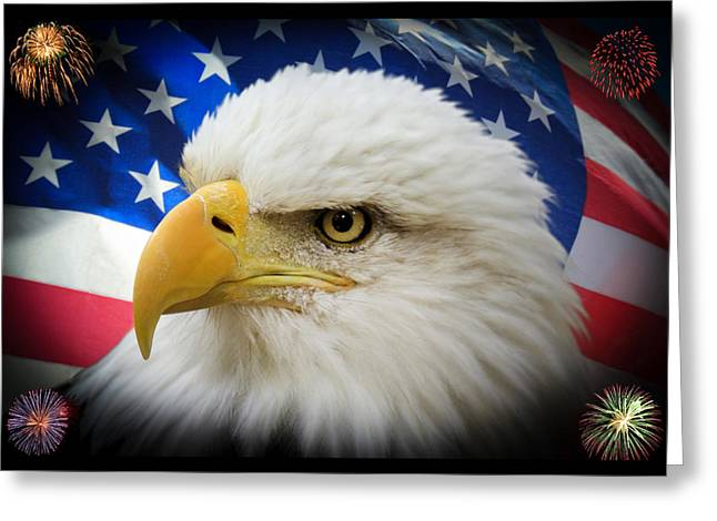 4th Greeting Cards - American Pride Greeting Card by Shane Bechler