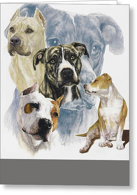 American Staffordshire Terrier Greeting Card by Barbara Keith