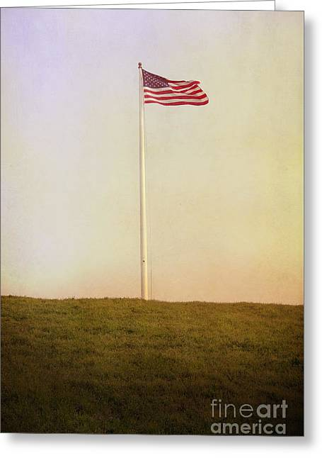 American The Beautiful Greeting Card by Margie Hurwich