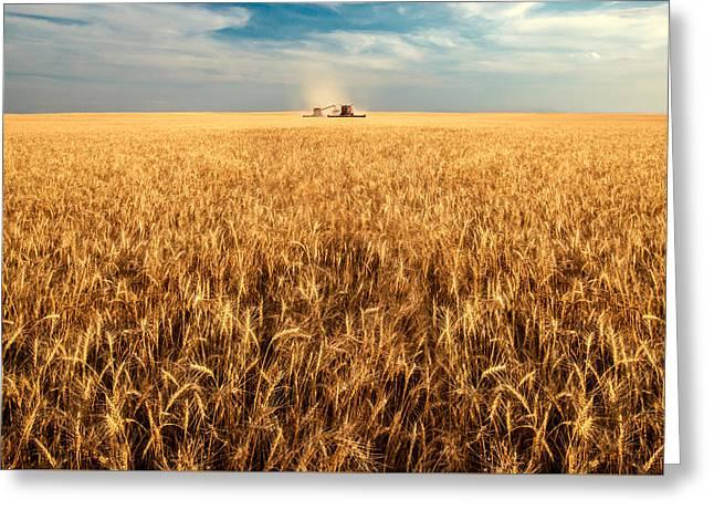 America's Breadbasket Greeting Card by Todd Klassy