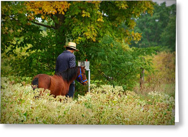 Amish Greeting Cards - Amish Autumn Greeting Card by Linda Mishler