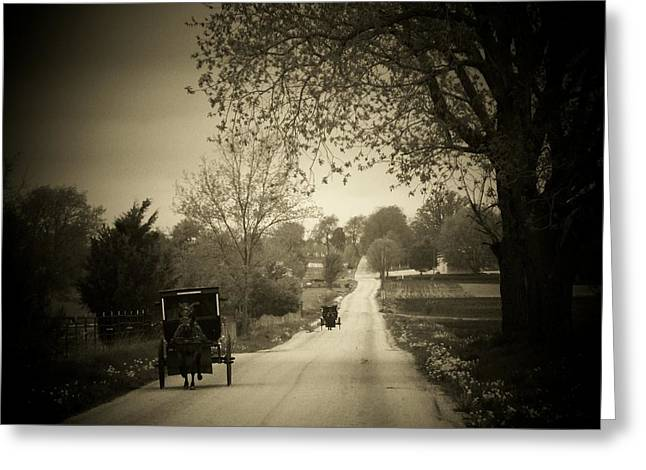 Amish Buggy Greeting Cards - Amish Buggys Greeting Card by Michael L Kimble
