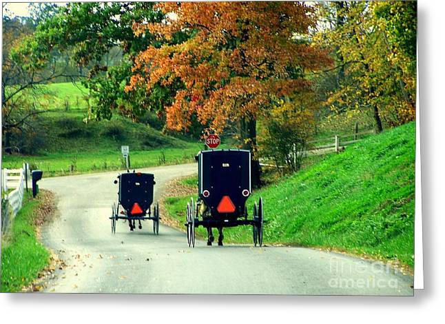 Amish Country In Autumn Ohio Holmes County Greeting Card by Charlene Cox