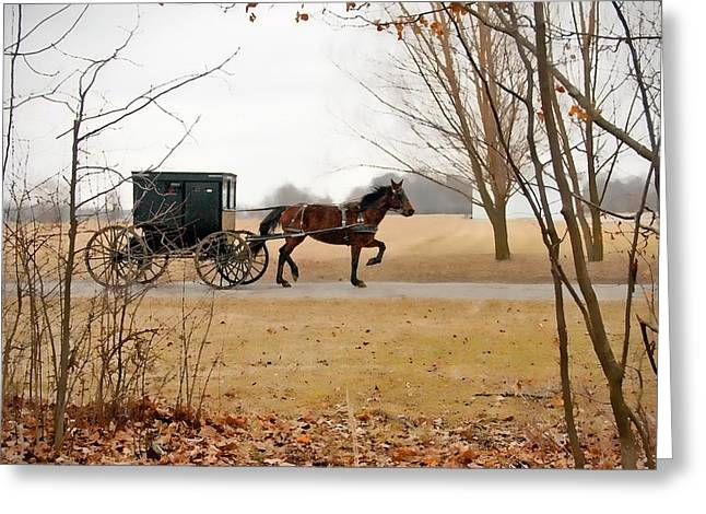 Amish Buggy Greeting Cards - Amish Dream 1 Greeting Card by David Arment