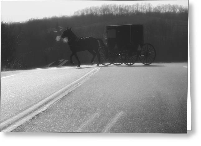 Amish Greeting Cards - Amish Horse And Buggy In Winter Greeting Card by Dan Sproul