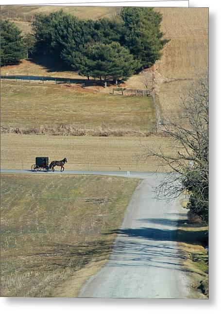 Amish Greeting Cards - Amish Horse And Buggy On A Country Road Greeting Card by Dan Sproul