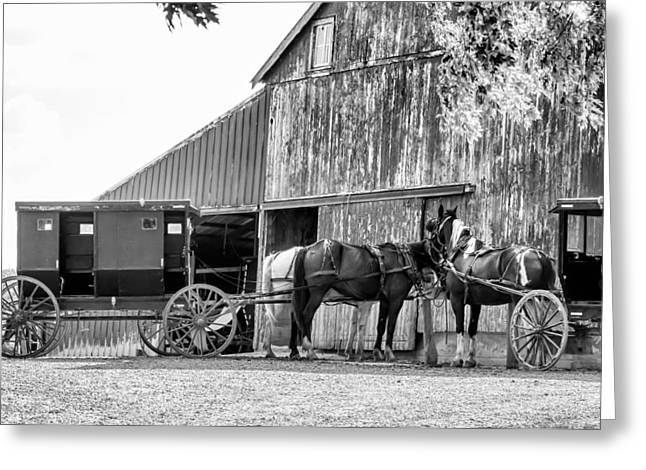 Horse And Cart Greeting Cards - Amish horse and wagon Greeting Card by Henry Fitzthum