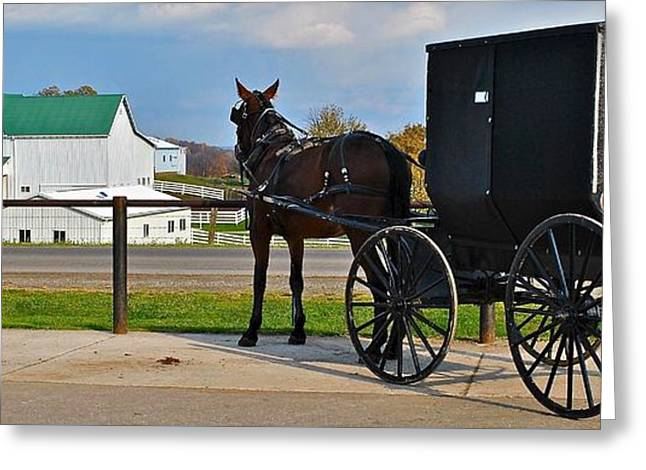 Amish Farm Greeting Cards - Amish Horse Buggy and Farm Greeting Card by Frozen in Time Fine Art Photography