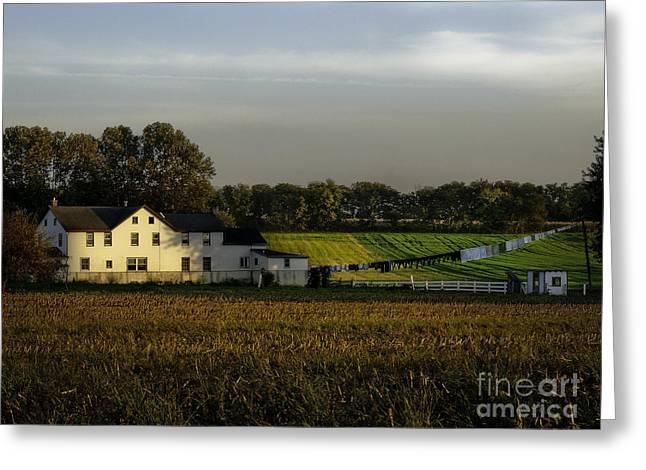 Amish Photographs Photographs Greeting Cards - Amish Sunrise Greeting Card by TAPS Photography