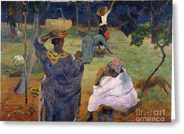 Vintage Painter Greeting Cards - Among the magoes at Martinique Greeting Card by Gauguin